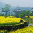 Rural landscape in wuyuan county — Stock Photo