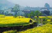 Ländliche landschaft in wuyuan county — Stockfoto