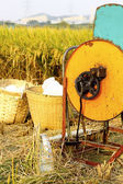 Macchina legno vintage riso — Foto Stock