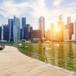 Singapore city skyline — Stock Photo #49751115