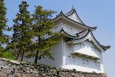 王の cha chi'、日本 — ストック写真