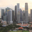 Singapore Skyline at Dusk — Stock Video #12739026