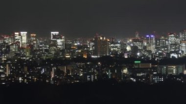 Tokyo skyline — Stock Video