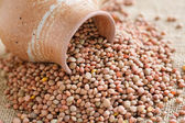 Castelluccio lentils — Stock Photo