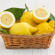 Постер, плакат: Lemons from Sorrento