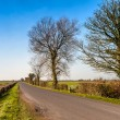 Countryside view of North Somerset — Stock Photo