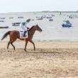 Sanlucar De Barrameda Beach Horse Racing 8th August 2013 — Stock Photo