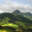 Stock Photo: Acores- panoramof flores island, east coast
