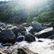 Stock Photo: Acores, creek on flores island