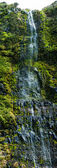 Acores waterfall on flores island — Stock Photo