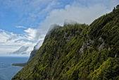 Azoren Flores Steilküste mit Wolken — Stockfoto