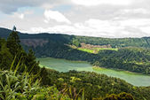 Acores sao miguel sete cidades green lake — Stock Photo