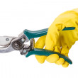 Pruning shears in hand — Stock Photo