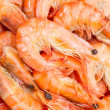 Stock Photo: Background of boiled shrimp