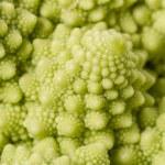 Romanesco Broccoli close-up — Stock Photo