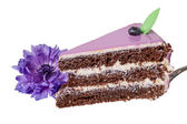 Piece of cake with blueberries and purple flower — Stock Photo