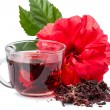 Red flower and hibiscus hot tea — Stock Photo #17835121