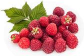 Ripe raspberries on a white plate — Photo