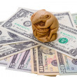 Netsuke rat and US dollar bills — Stock Photo