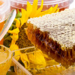 Honey and honeycomb — Stock Photo
