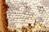 Sealed honeycomb — Stock Photo