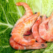 Frozen Shrimps on leaf Savoie — Stock Photo