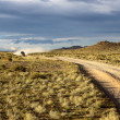 Stock Photo: Roads in Mongolia