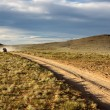 Stock Photo: Roads in the Mongolia