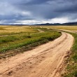 Roads in the Mongolia — Stock Photo #13183810
