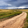 Roads in the Mongolia — Stock Photo
