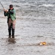 Stock Photo: Fishing in the Mongolia