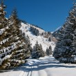 Winter mountain landscape — Stock Photo #13367864