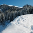 Winter mountain landscape — Stock Photo #13367878