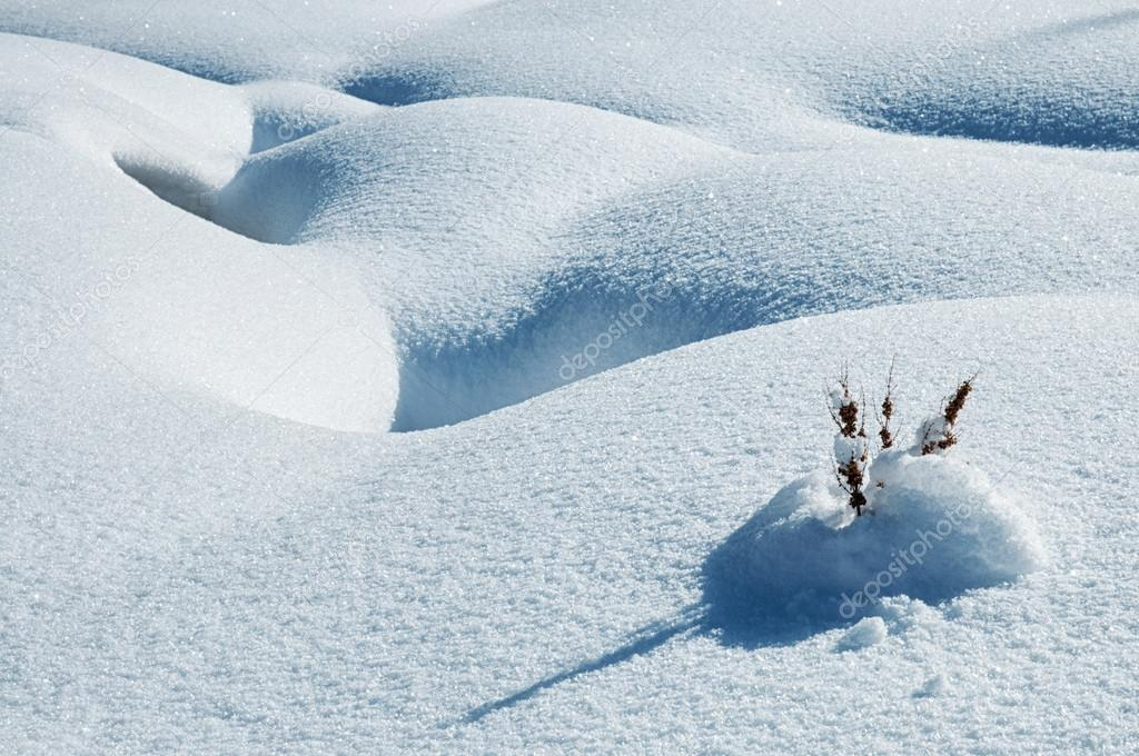 Detail of winter landscape with snow — Stock Photo #13367885