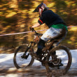 Mountain bike competition — Foto de Stock