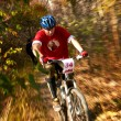 Mountain bike competition — Stockfoto