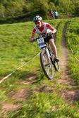 Dağ bisikleti yarışması — Stok fotoğraf