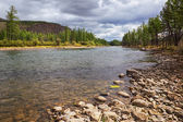 River Shishged in Mongolia. — Stock Photo