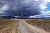 モンゴルの道路上の車 — ストック写真