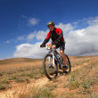 Foto Stock: Mountain bike competition