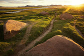 Footpath and sunrise in the valley in Western Mongolia — Stock Photo