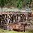 Old wooden bridge in the Mongolia — Stock Photo #24569473