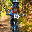 Foto Stock: Extreme mountain bike competition