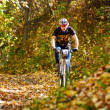 Mountain bike competition — Stock Photo #34947013