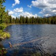 Lake Small Yazevoe, Altai, Kazakhstan — Stock Photo