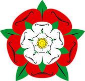 Tudor rose - Illustration — Stock Photo
