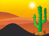 Cactus plants in desert - Stock Illustration — Stock Photo