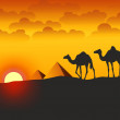Stock Photo: Camels and Pyramids - Illustration