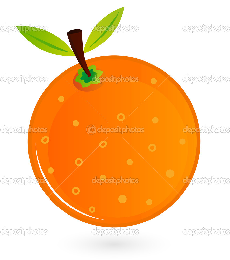 Orange for your design. Vector Illustration — Stock Vector #12585776