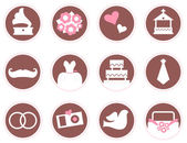 Retro wedding design elements and icons isolated on white — Stock Vector